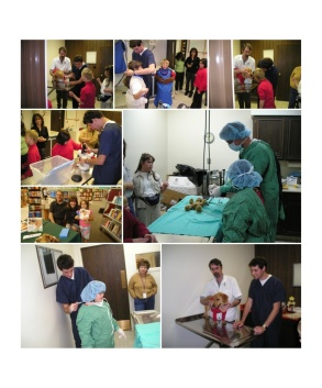 Community Outreach Collage